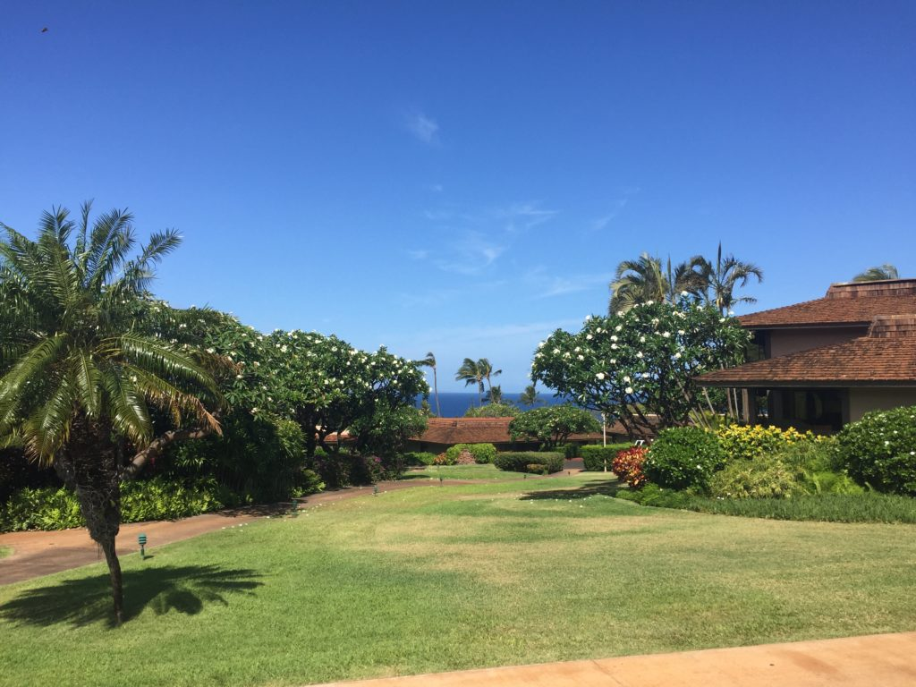 Tropical Hawaiian, Kaanapali Plantation