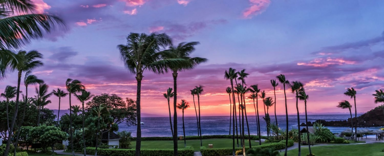 Testament Real Estate Maui and their happiness with transitioning