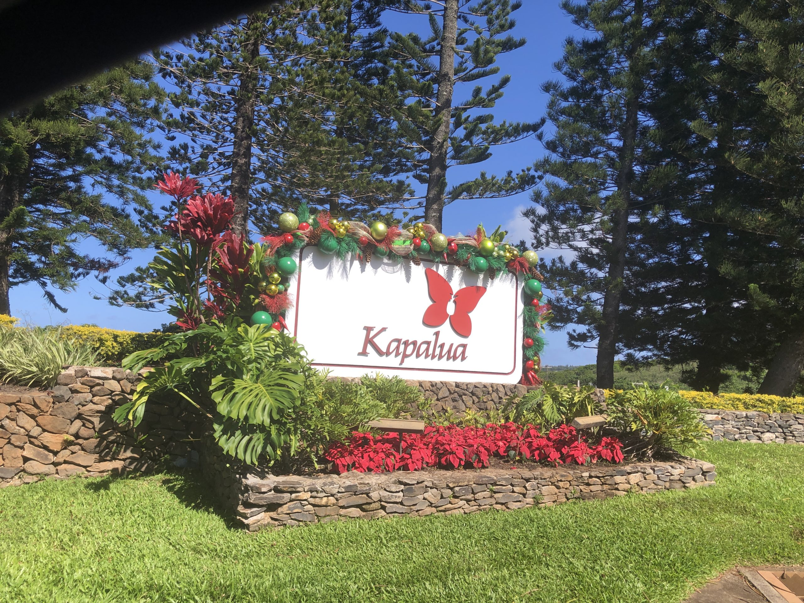 Welcome to Kapalua