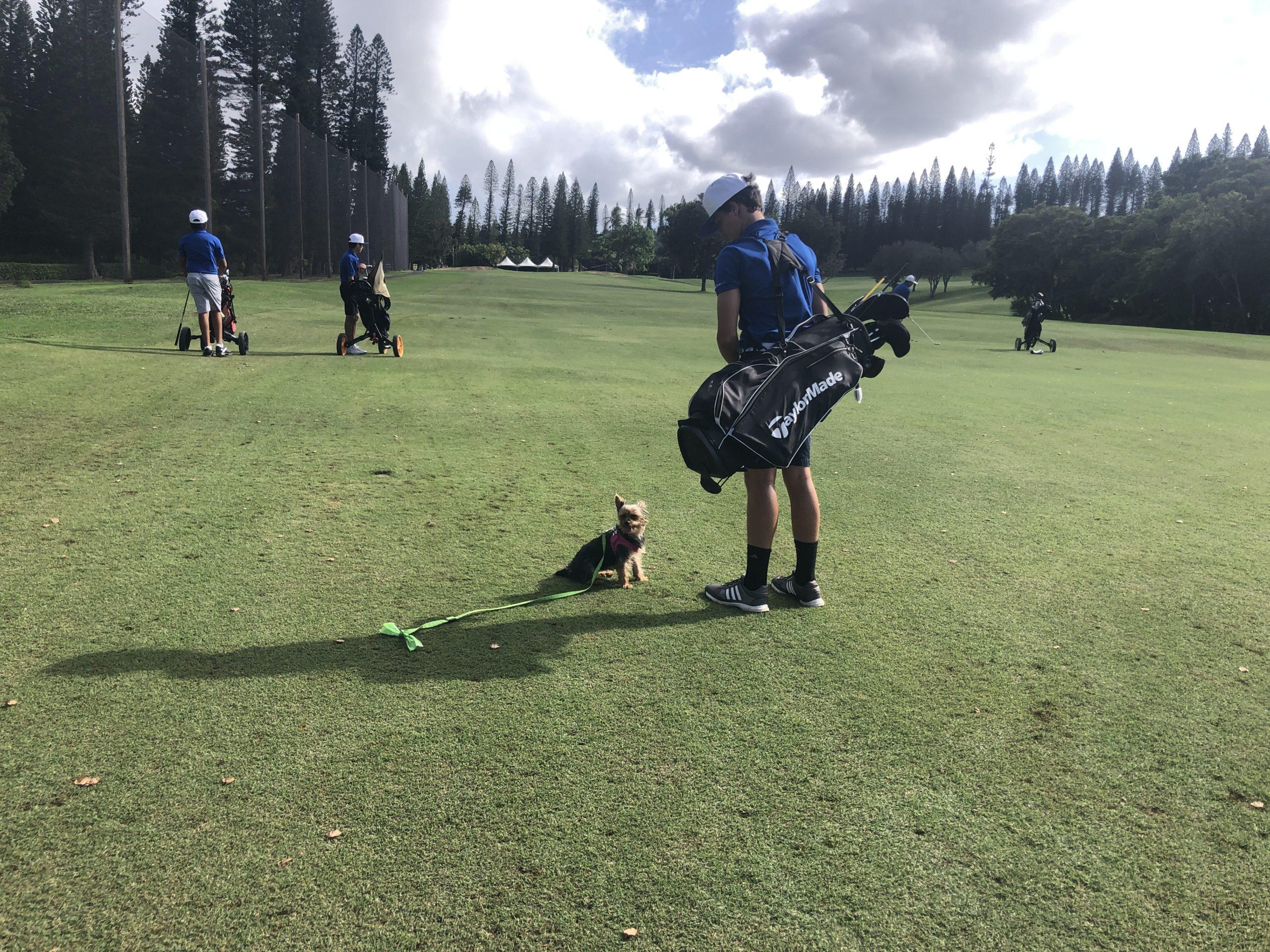 Golf Kapalua Bay Course Maui