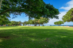 Grass Park view at Honokowai Beach Park