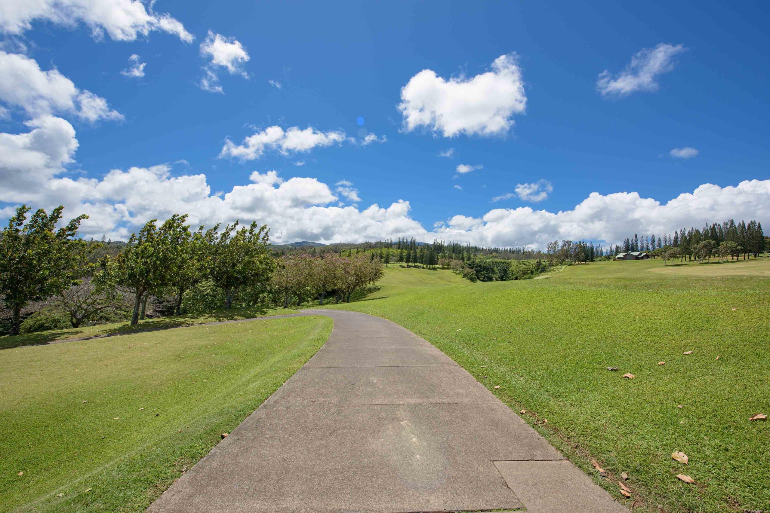 View of Kapalua Village Trails in Kapalua Maui Hawaii